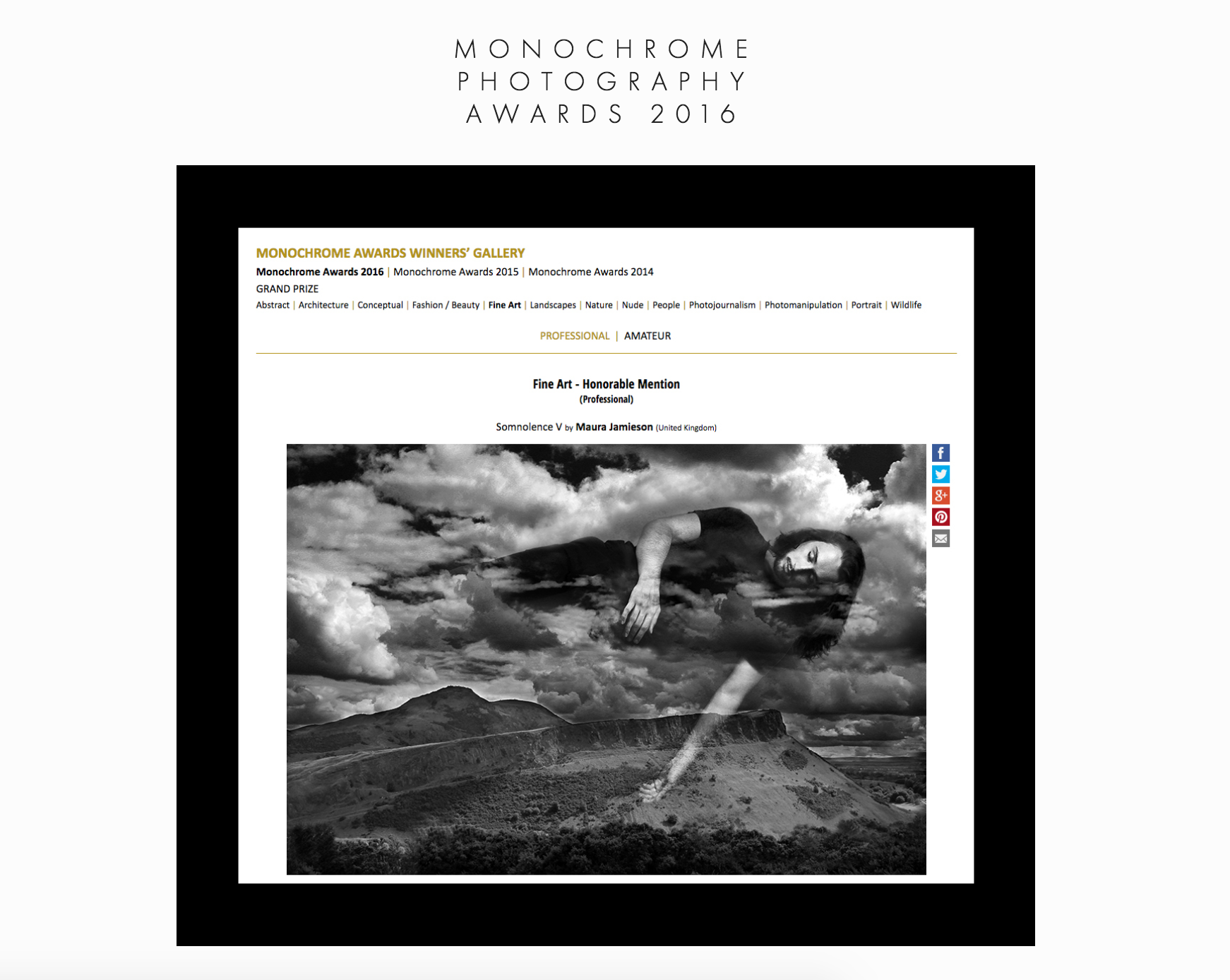https://monoawards.com/winners-gallery/monochrome-awards-2016/professional/fine-art