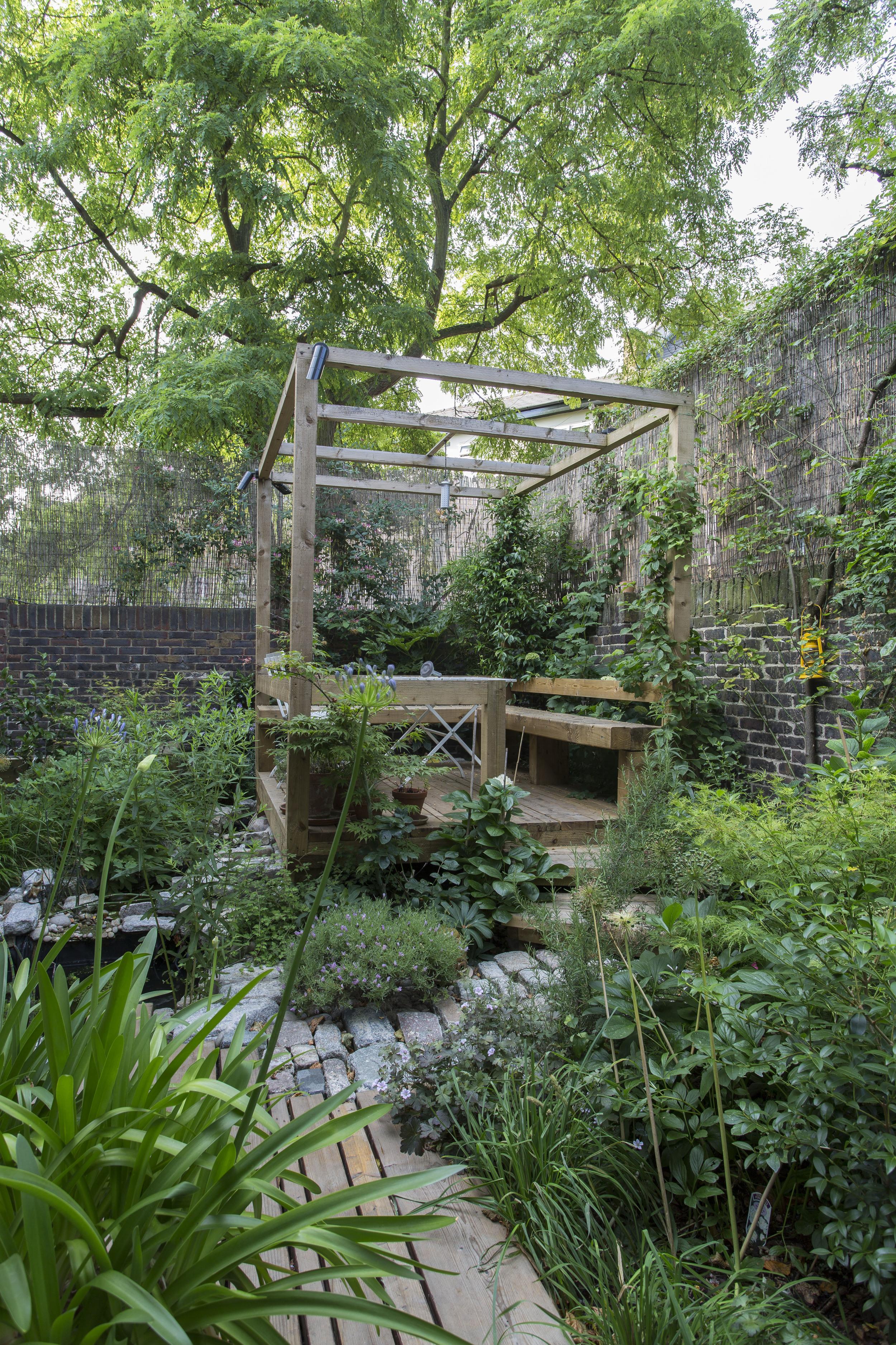 Propagating Dan Garden Design Islington London