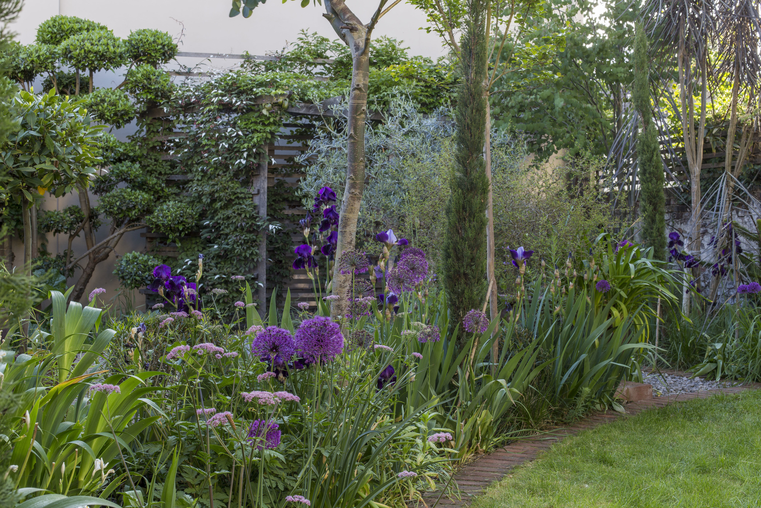 Propagating Dan Garden Design Greenwich London