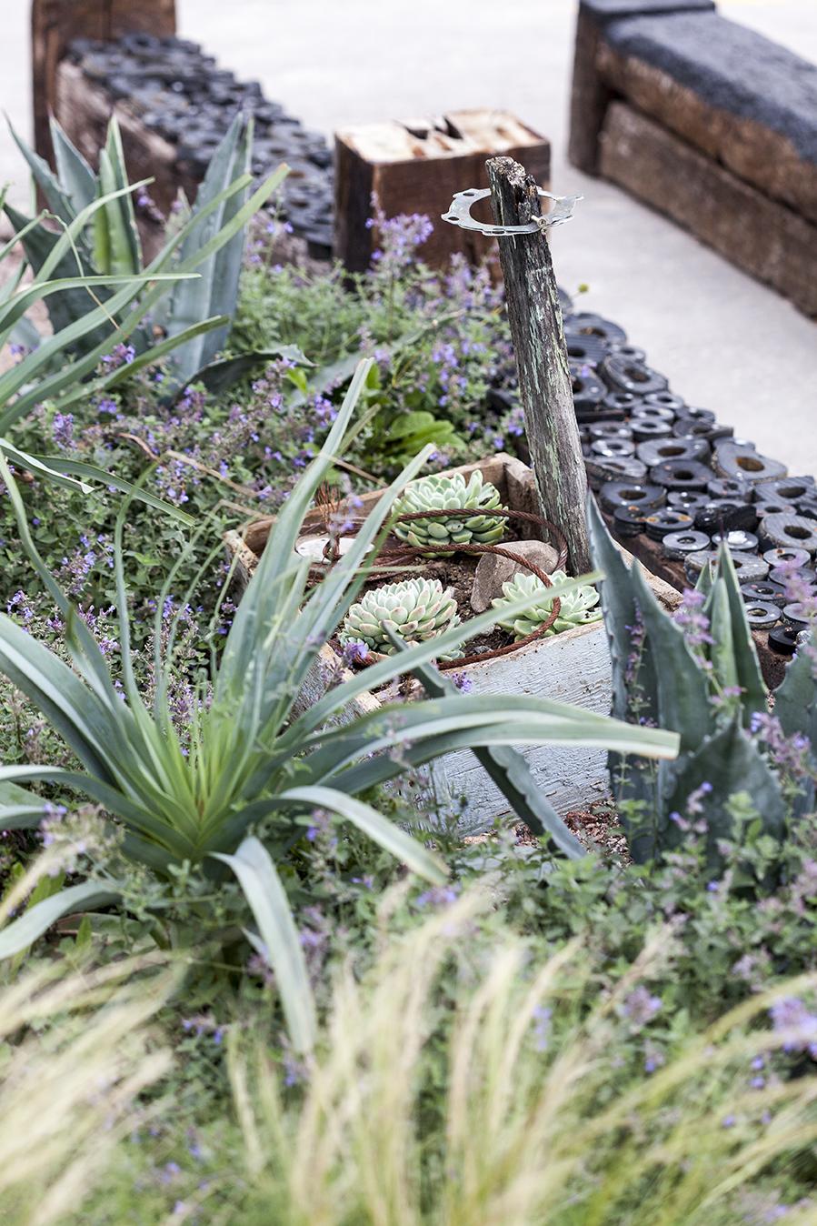 Propagating Dan Garden Design Franks Peckham