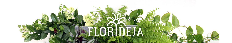 FLORIDEJA