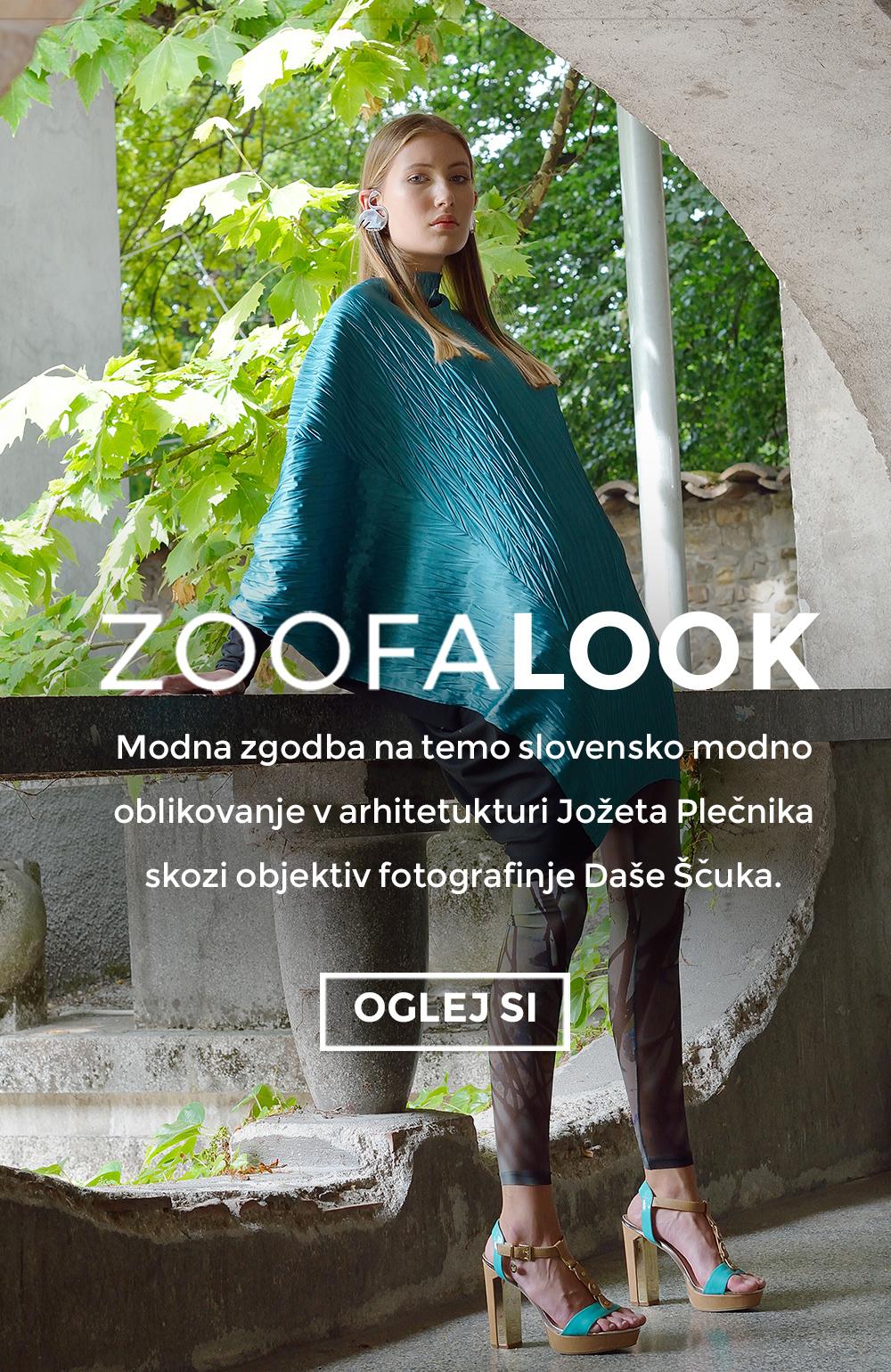 zoofalook-ds.jpg