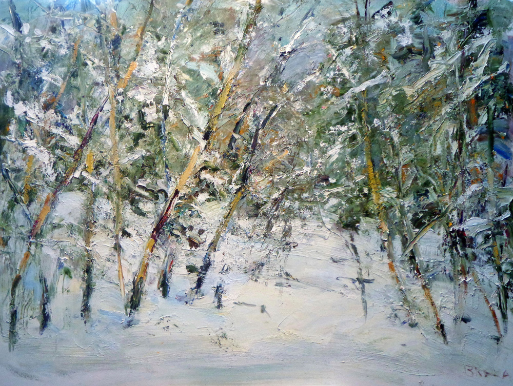 ASPEN SNOWFALL