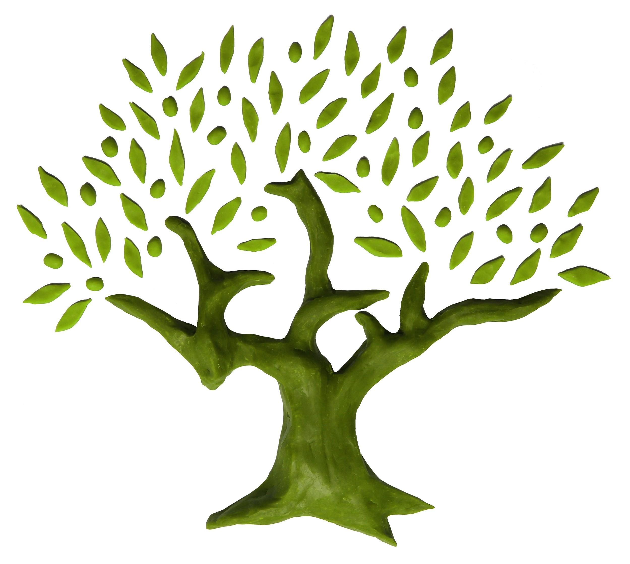 Wonderbaar Vernielde boom groeit uit tot symbool — Plant een Olijfboom UM-56