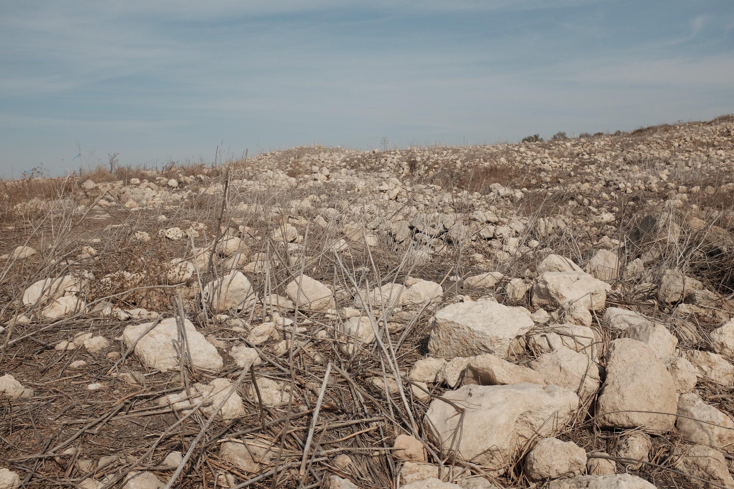 Stenen waar ooit de huizen van Bayt Nattif stonden
