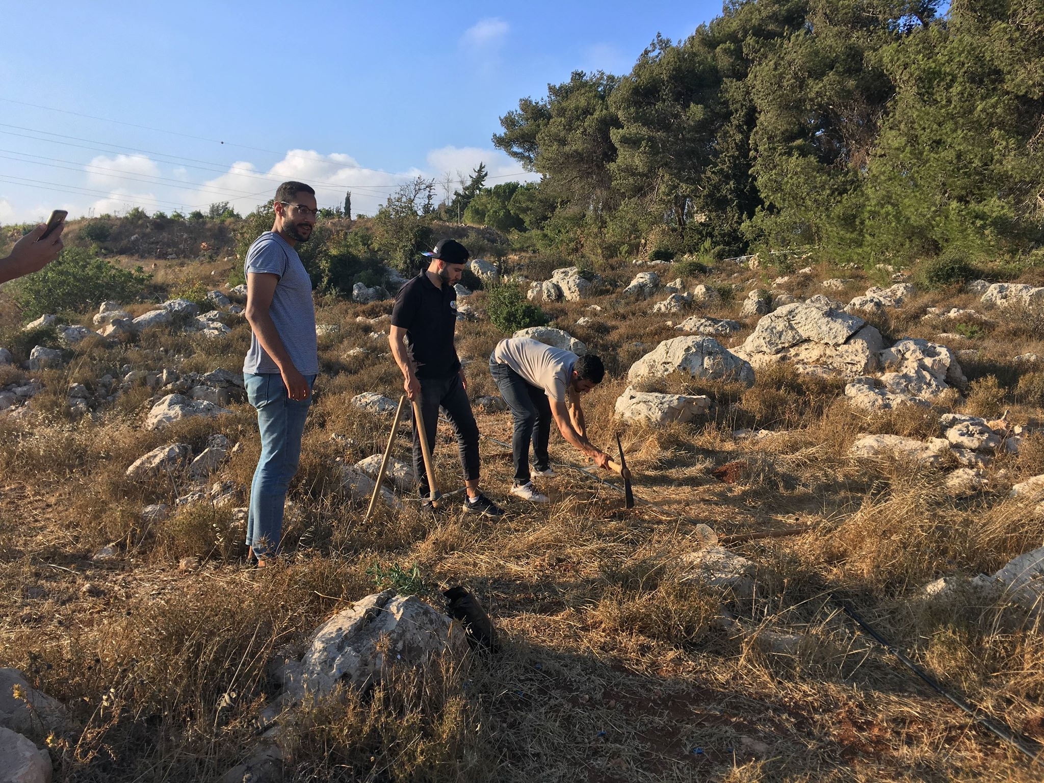 Mustafa, Wissam en Adel planten 55 bomen