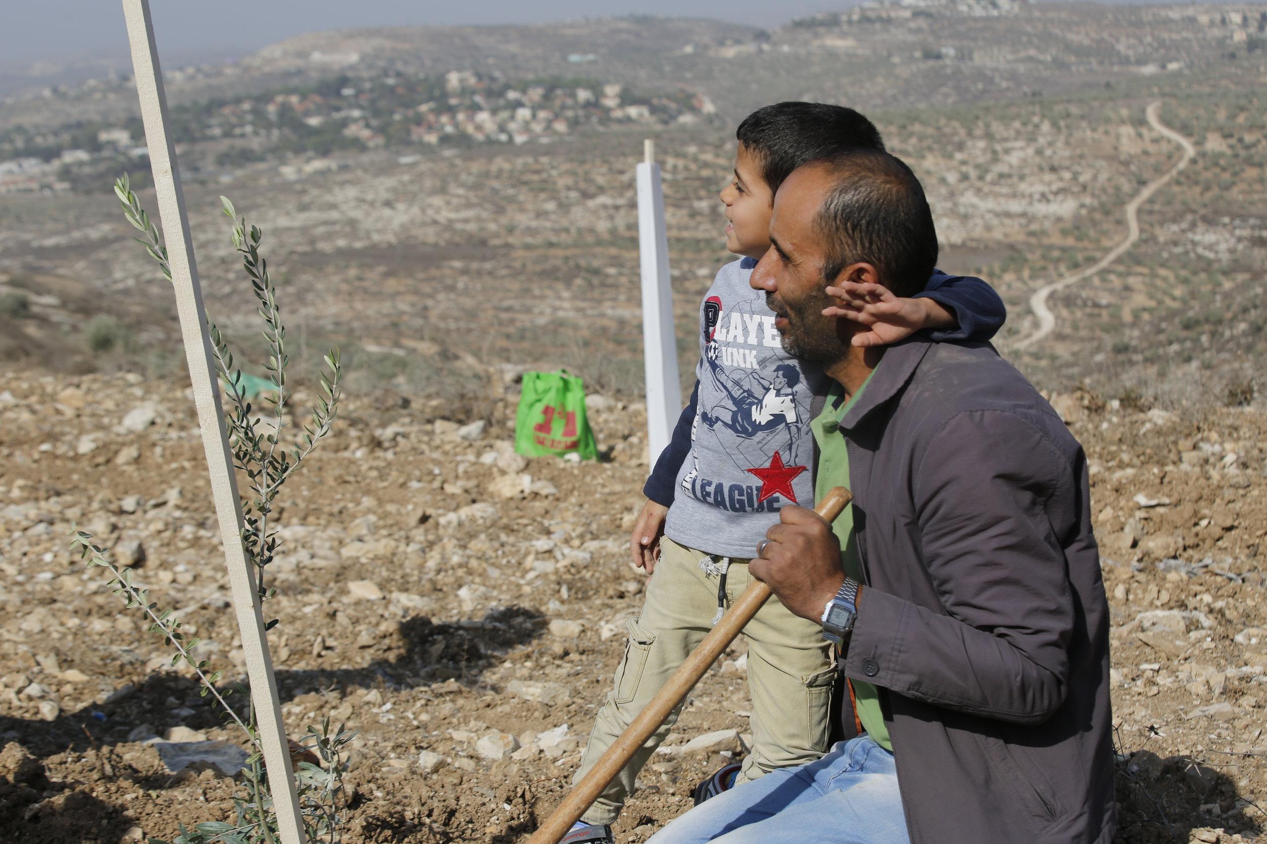 Foto: Haitham Khatib voor Plant een Olijfboom