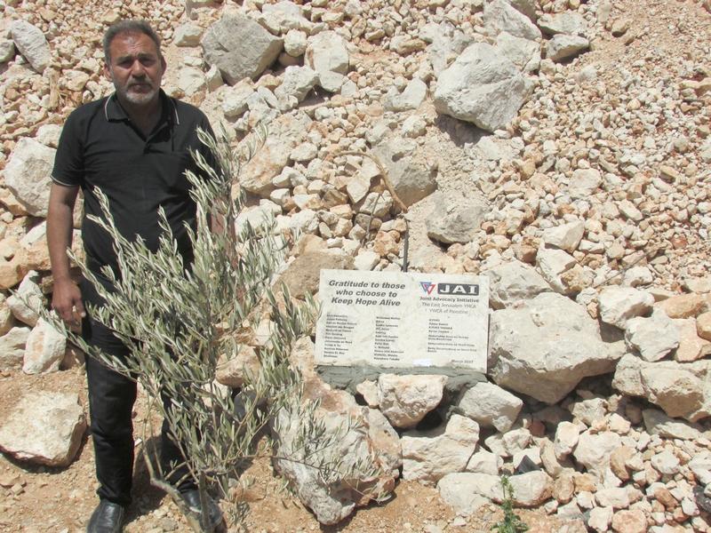 Bomen van Hamed Mohamad Hamed (50) uit Housan werden vernield in 2015. Om het land te cultiveren ontving hij 80 olijfbomen, waarvan 15 van Naima