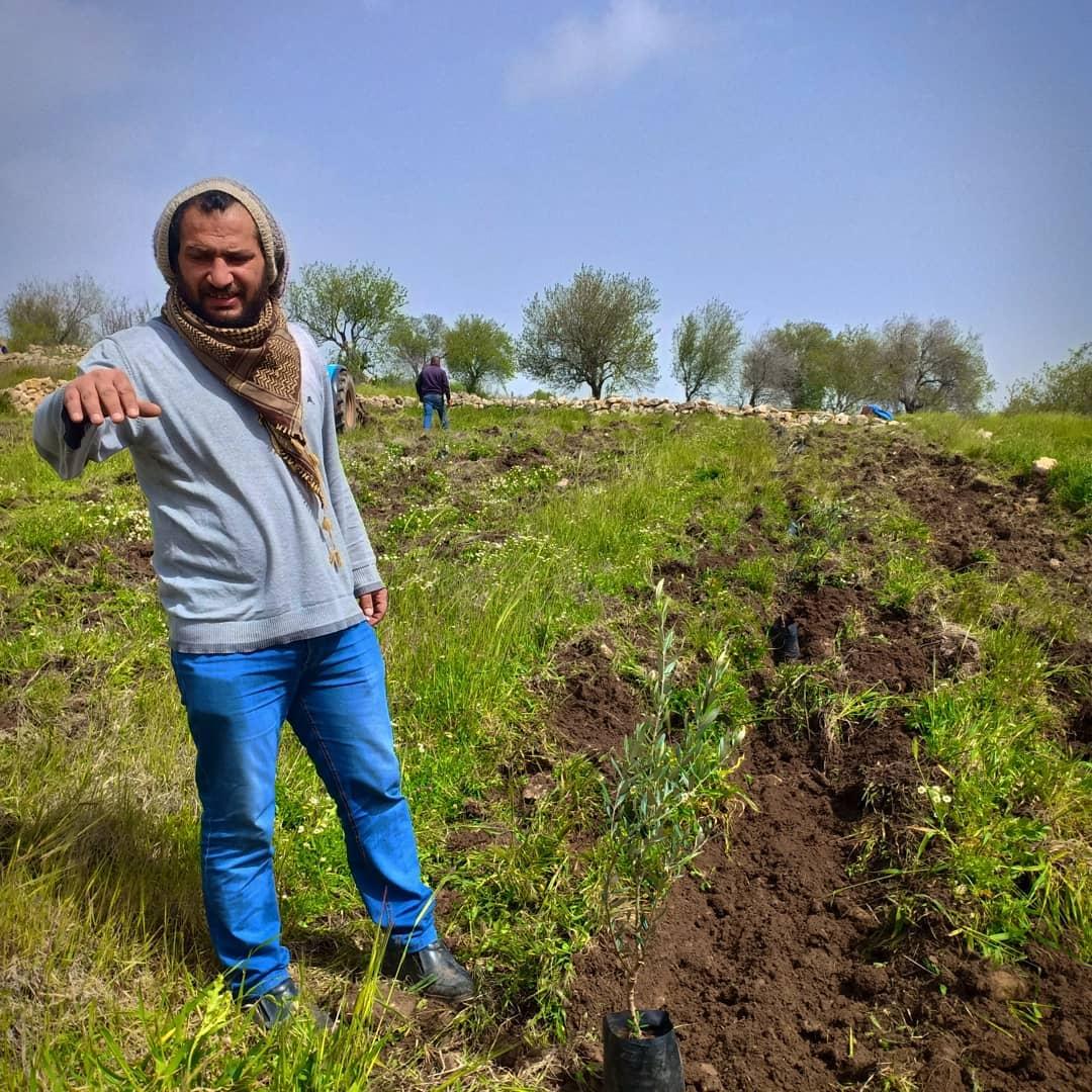 Baha en een jong olijfboompje