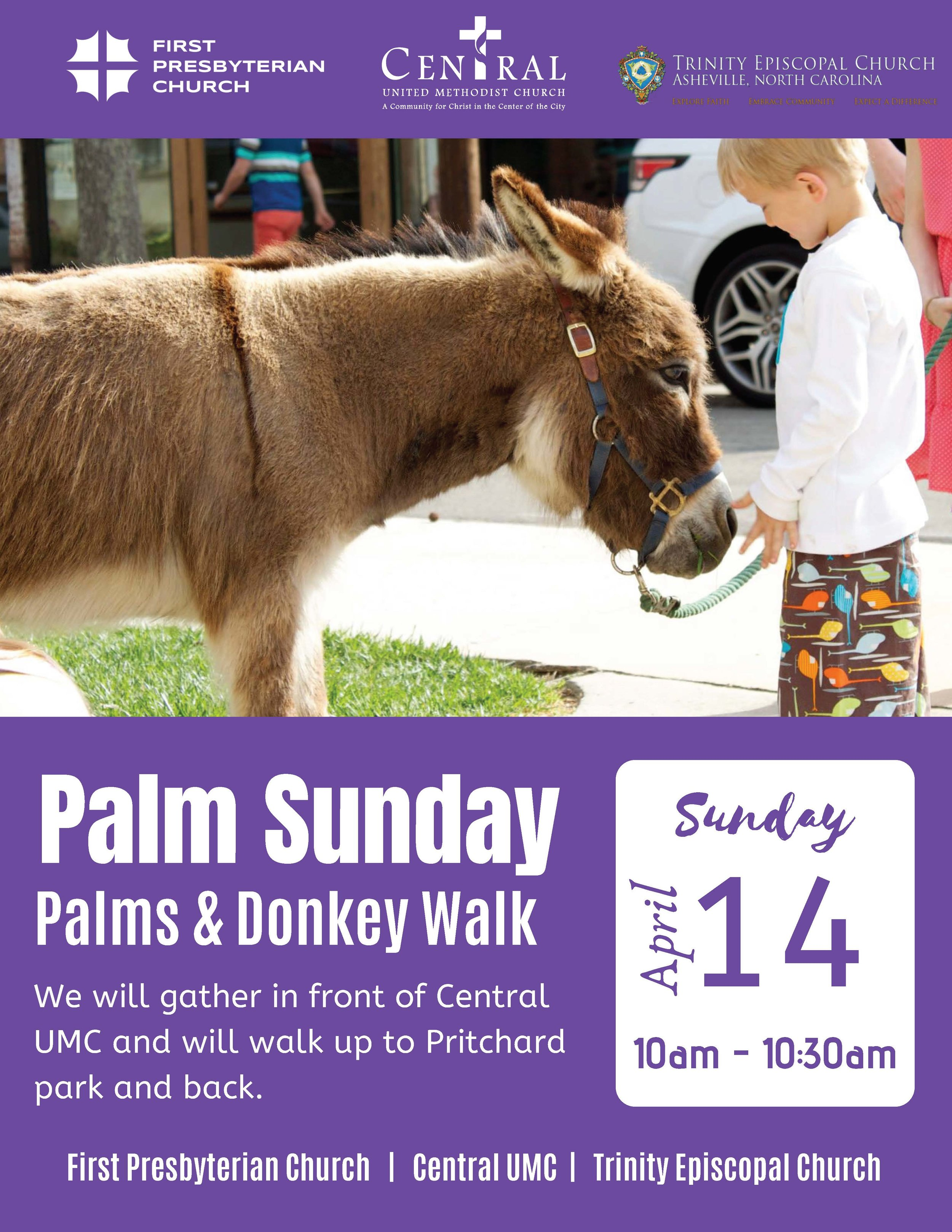 Palm Donkey Walk 2019 flyer final.jpg