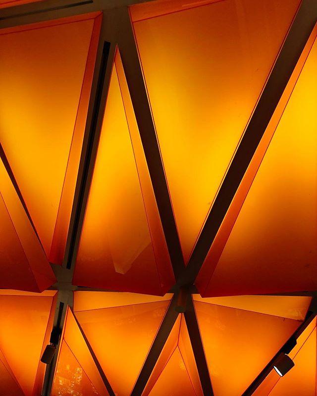 🍑🍁🤬🎃👩🦰🦊🦁🐡 . . #geometric #orange