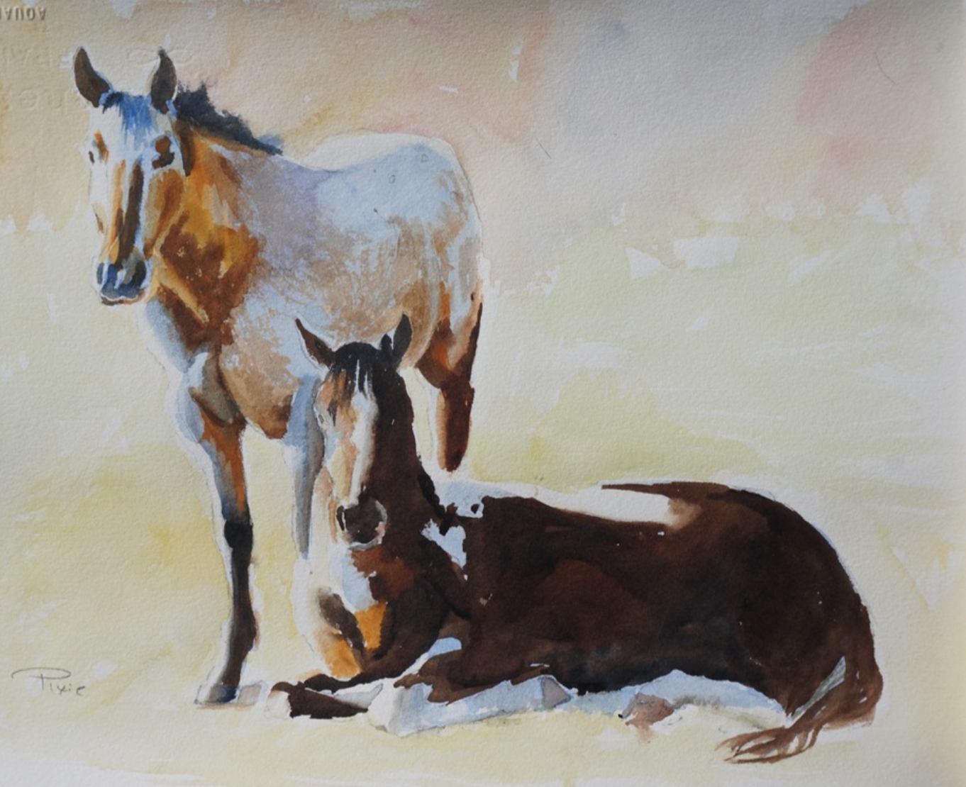 Pixie Glore - http://www.pixieglore.comI paint horses in rich tones with oil paints and watercolors. I have a horse and the spirit of him and his friends is what captivates my soul.