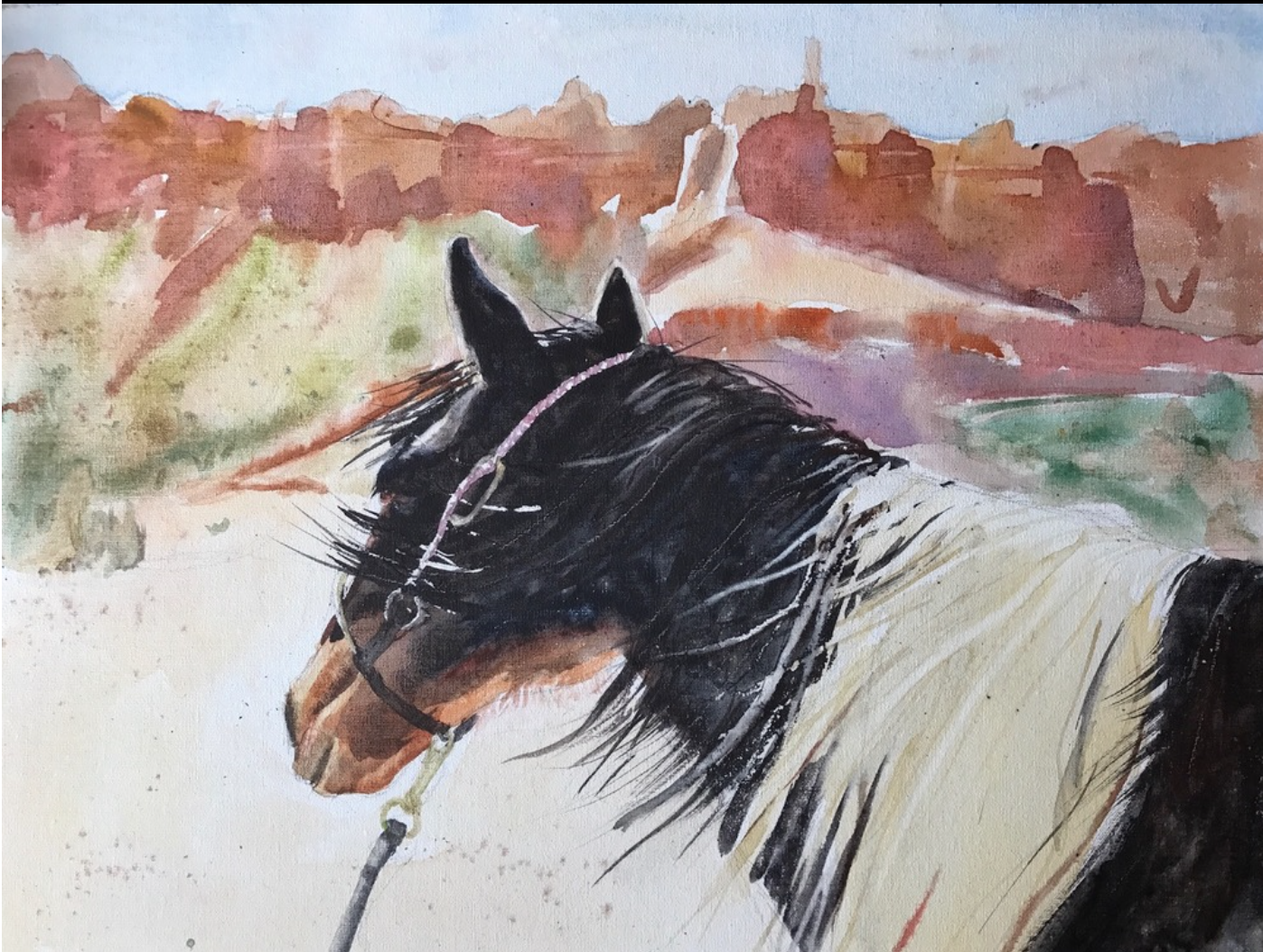 Pixie Glore - http://www.pixieglore.comI paint horses in oils and in watercolor. I have a horse and I try to capture the spirit and emotion of these beautiful creatures with strong drawing and creative expression.