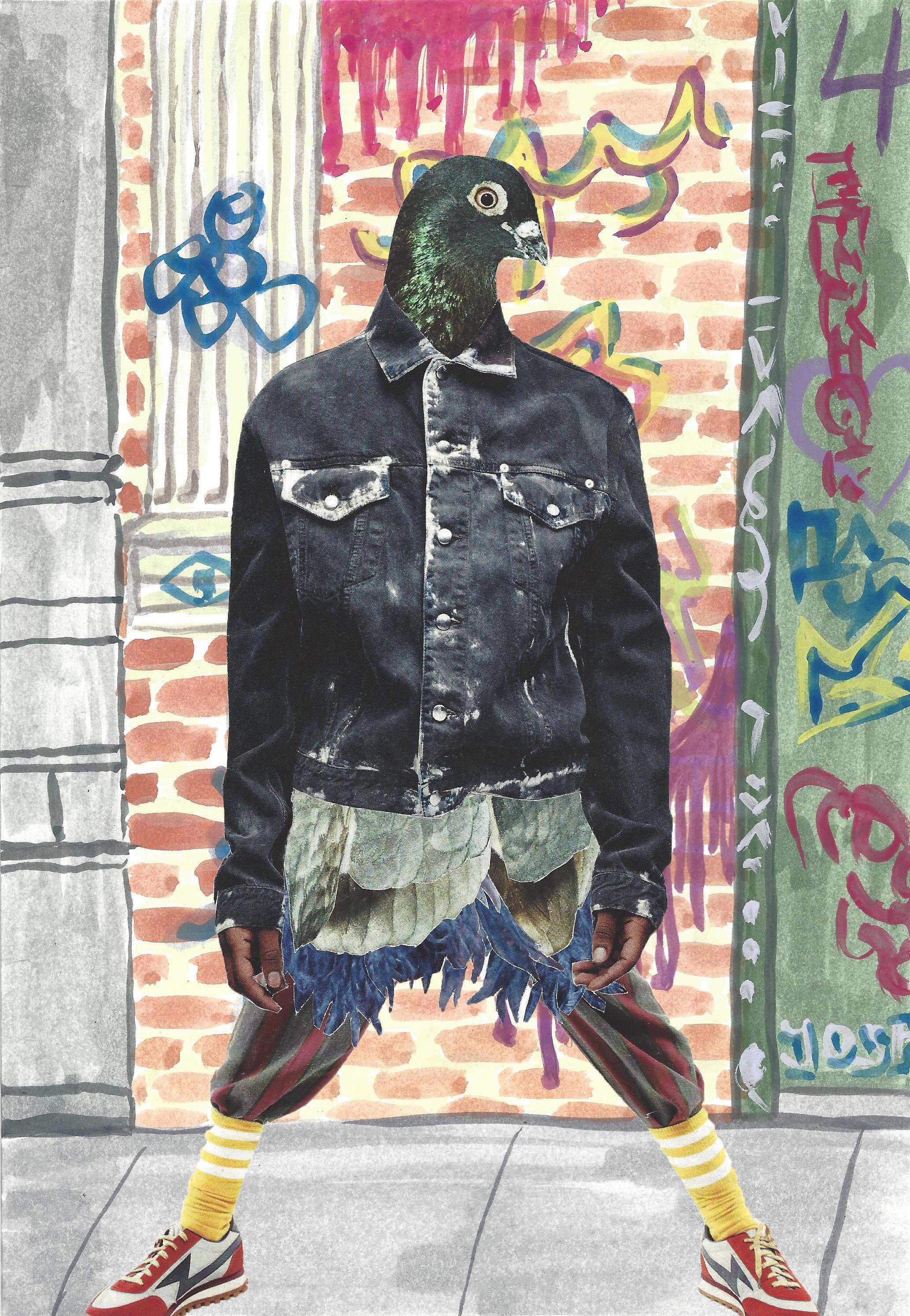 Street Style Pigeon