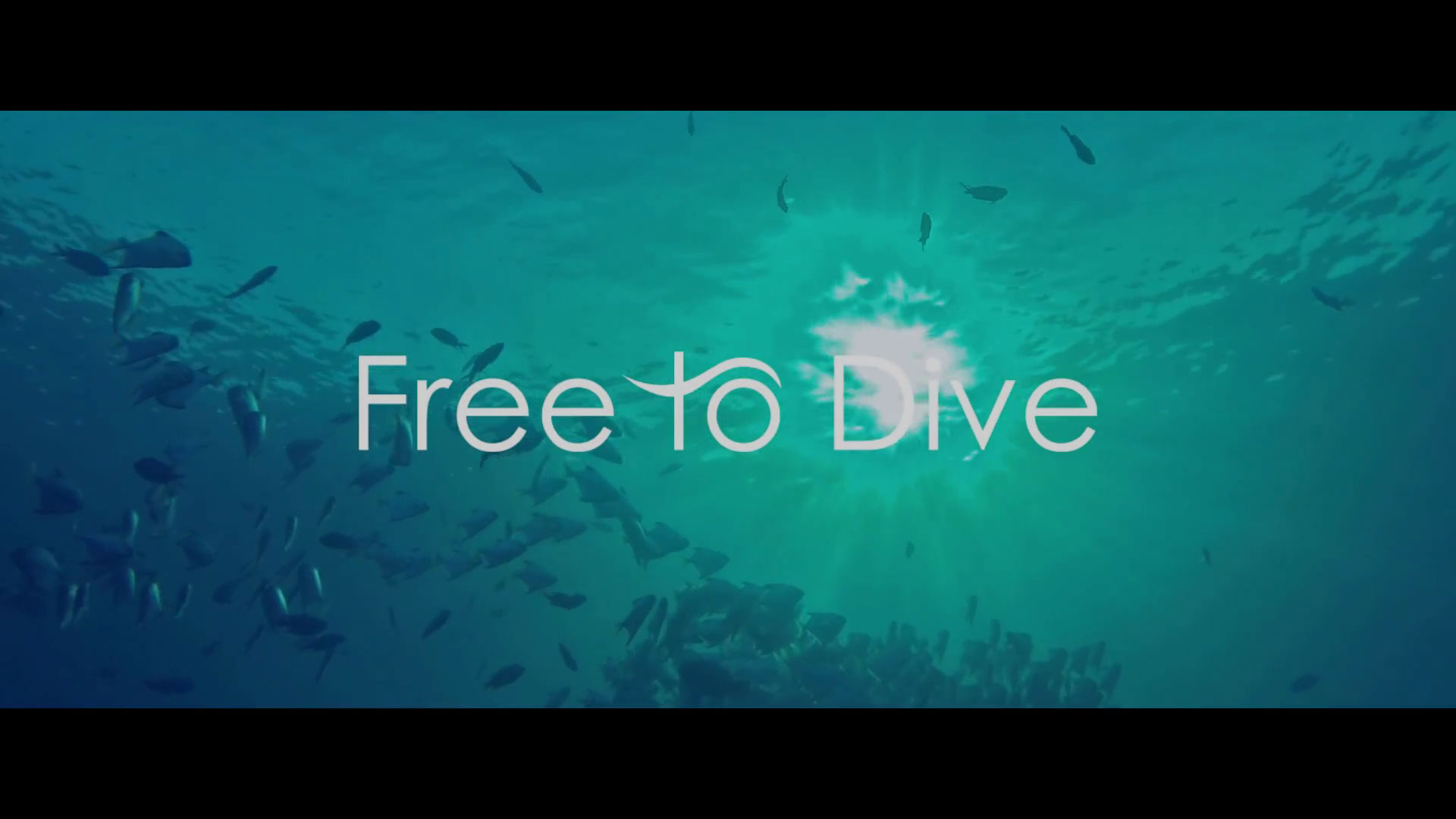 Teaser Free to Dive (documentaire auto-produit)