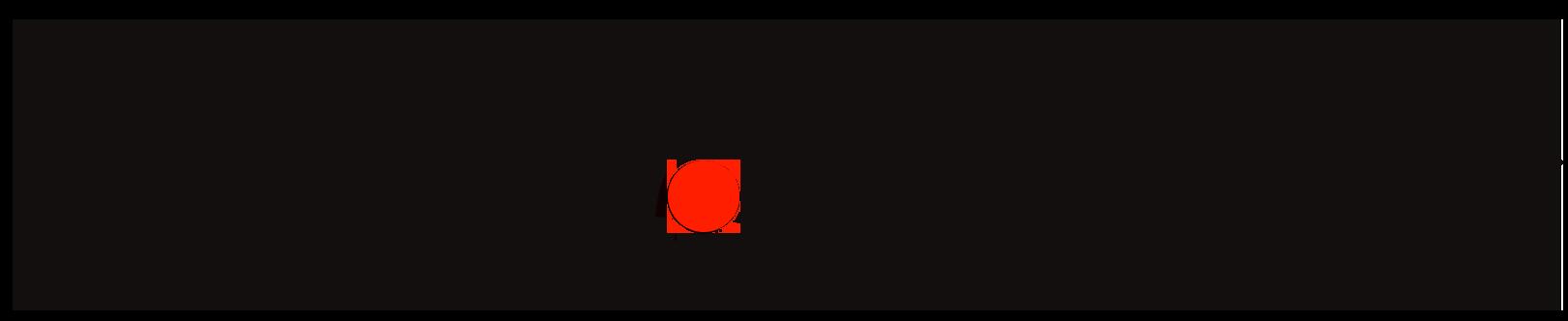 Viva Concepts Logo black.png