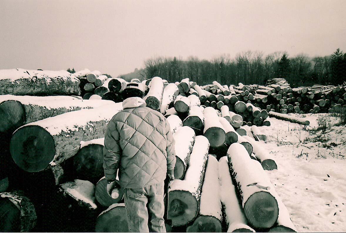 Log Hunting