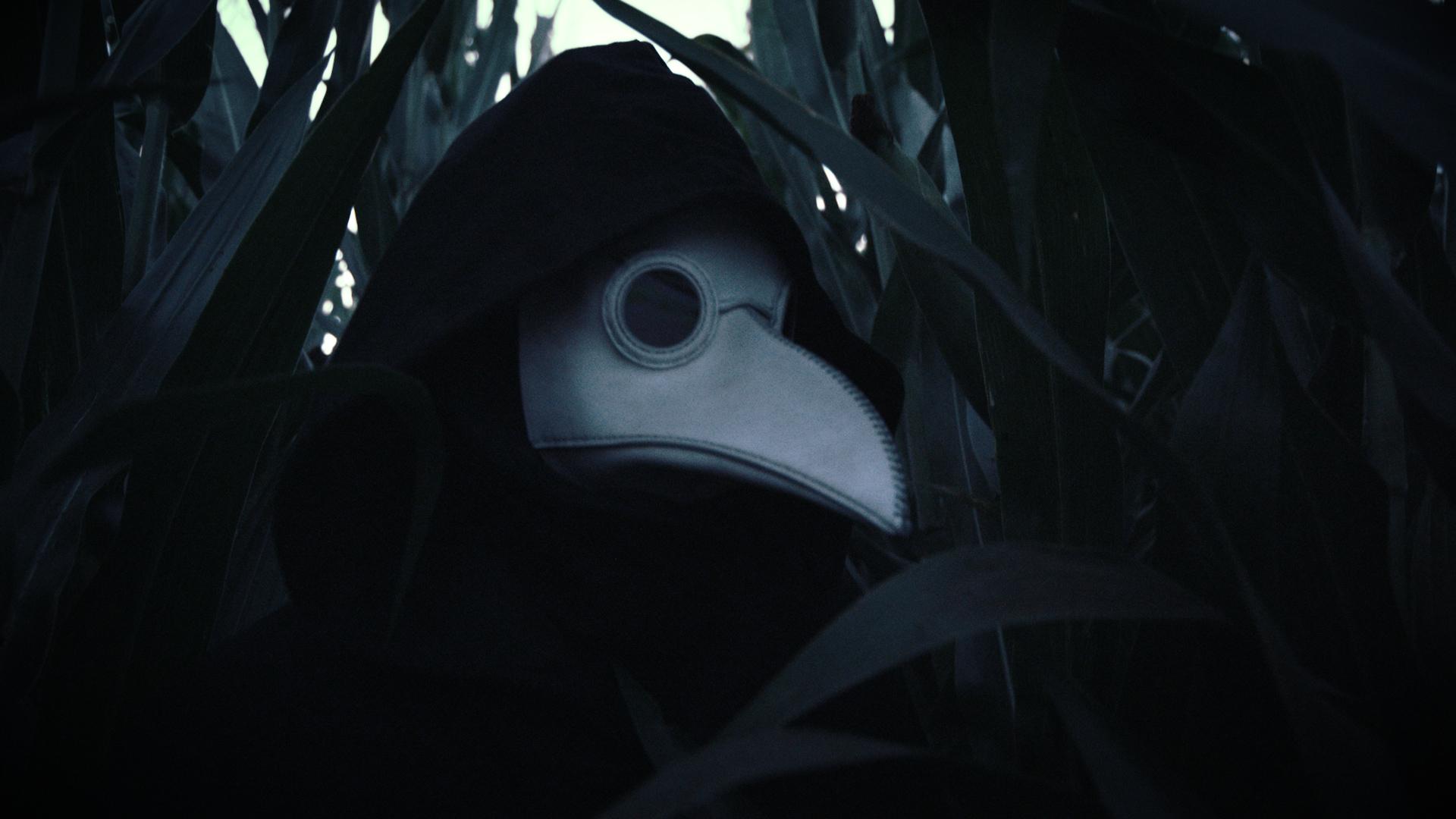Sparrow 16.jpg