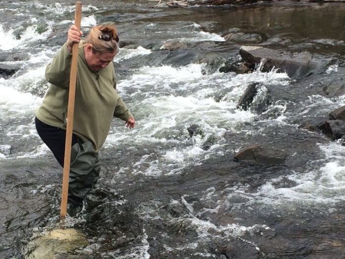 Nancy Lawler, Water Quality Coordinator for the Musconetcong Watershed Association, taking a benthic invertebrate sample in the Musconetcong River.