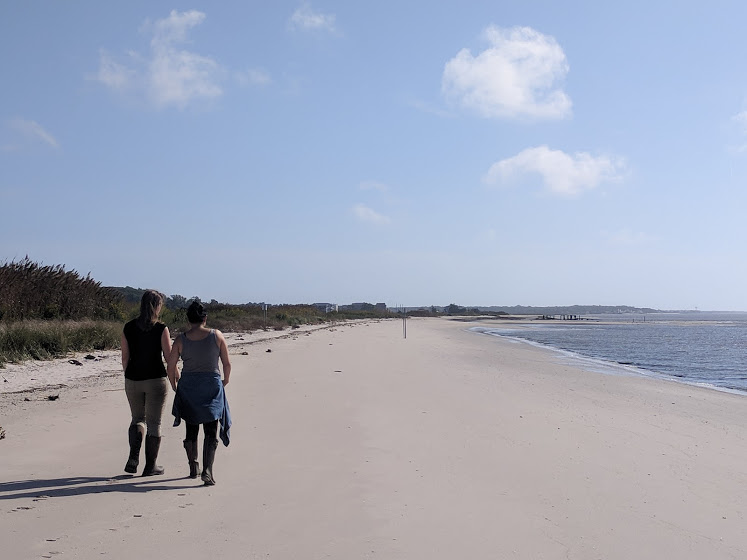Conference attendees walked along South Reeds Beach in the Delaware Bay on a day-one field trip.