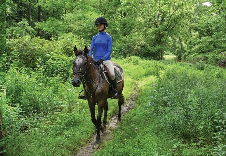 equestrian-trail.jpg