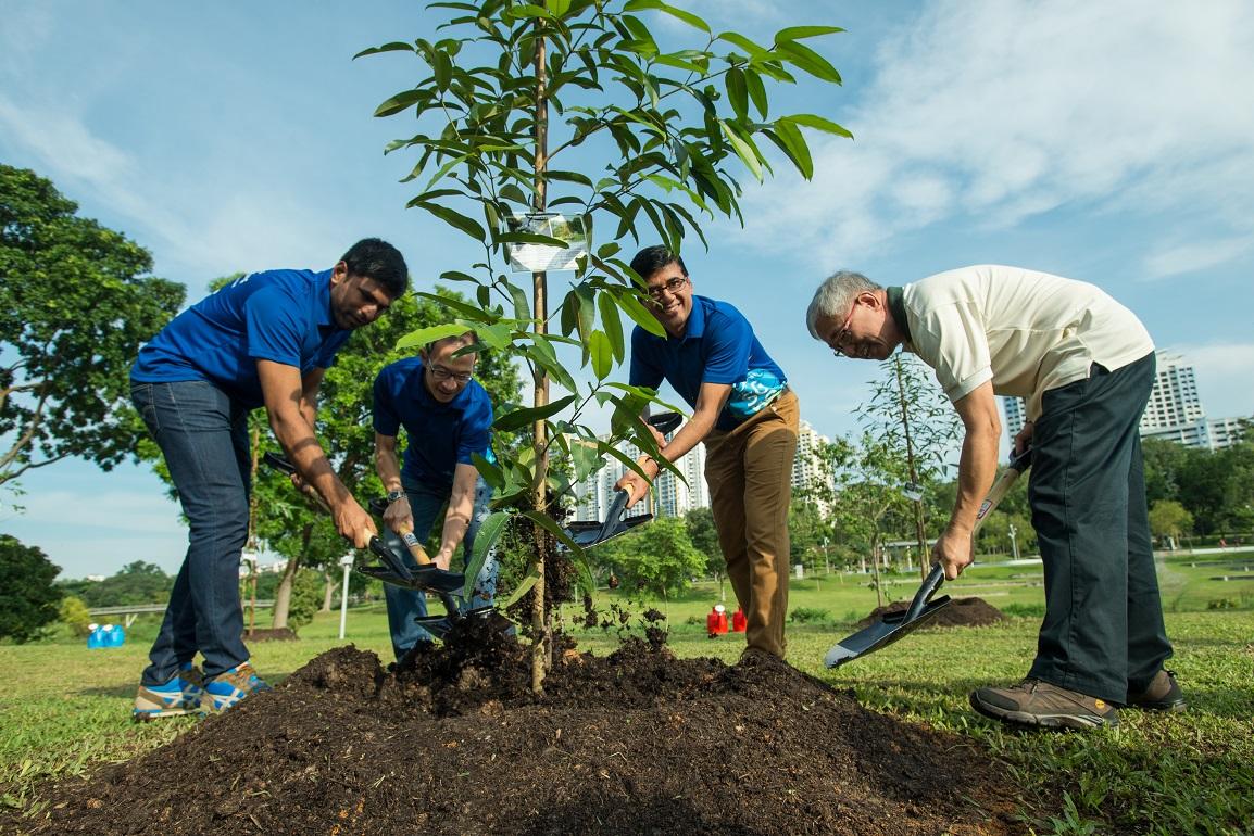 tree-planting.jpg