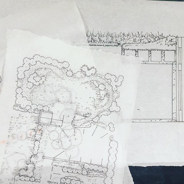 Busy, busy, busy... . Project updates coming soon!  #dcdesign #landscapedesign #sketches #trace #landscapearchitecture #plantingdesign #dcgardens