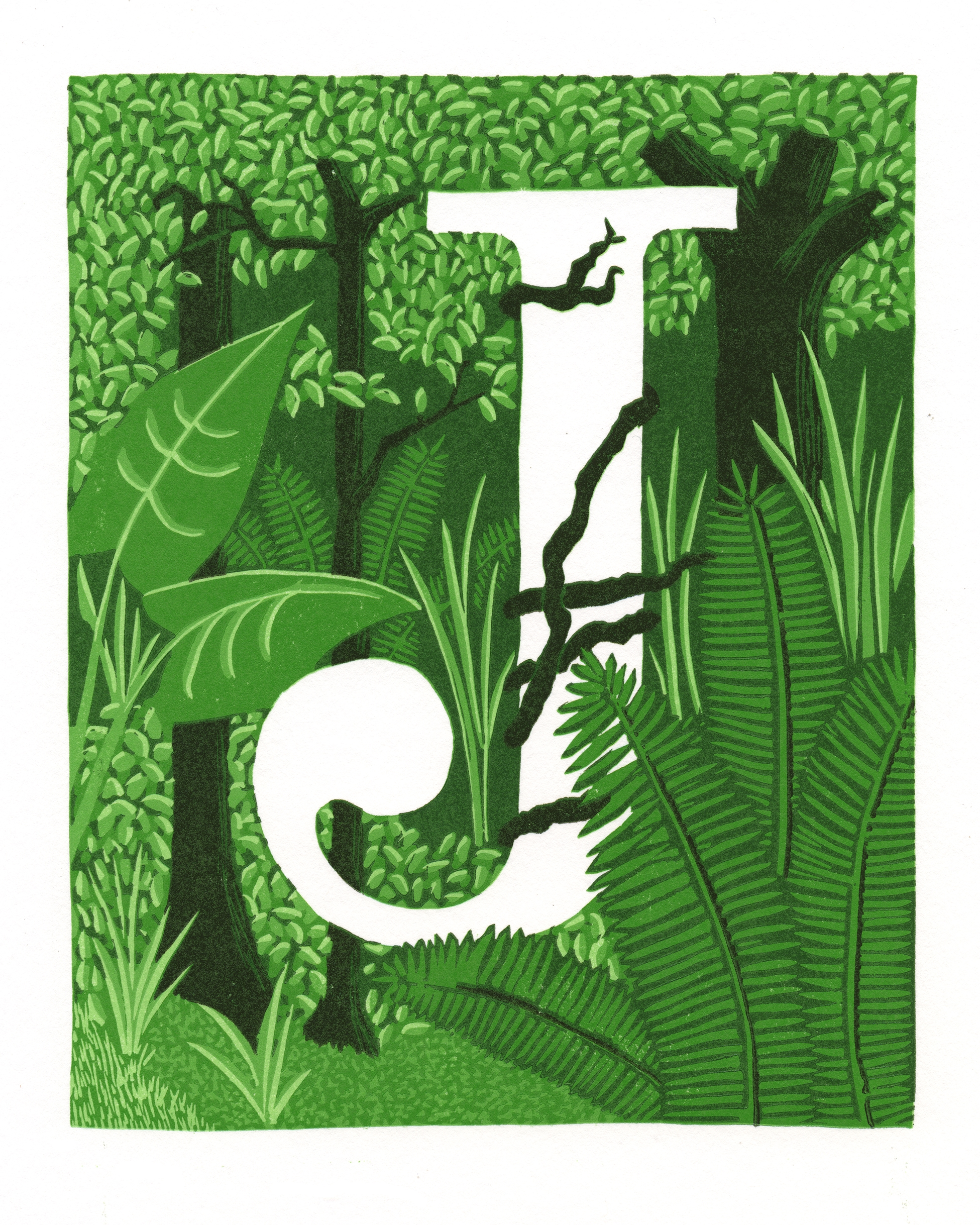 J is for Jungle, 2015