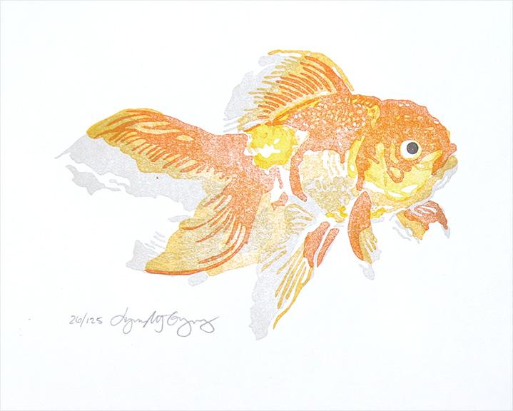 Oranda Goldfish, circa 2006