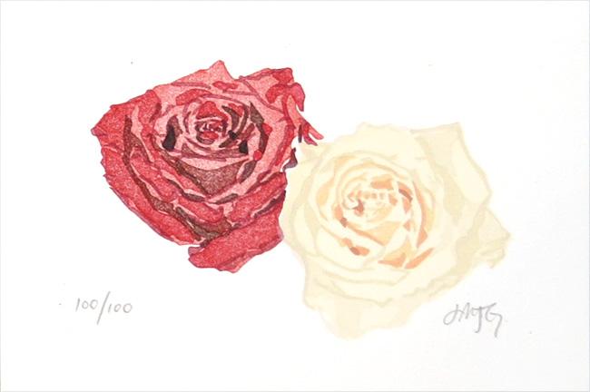 Roses, 2005