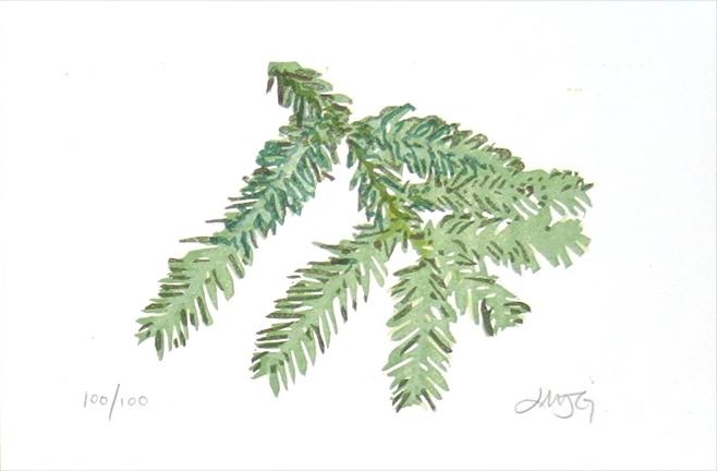 Redwood, 2005