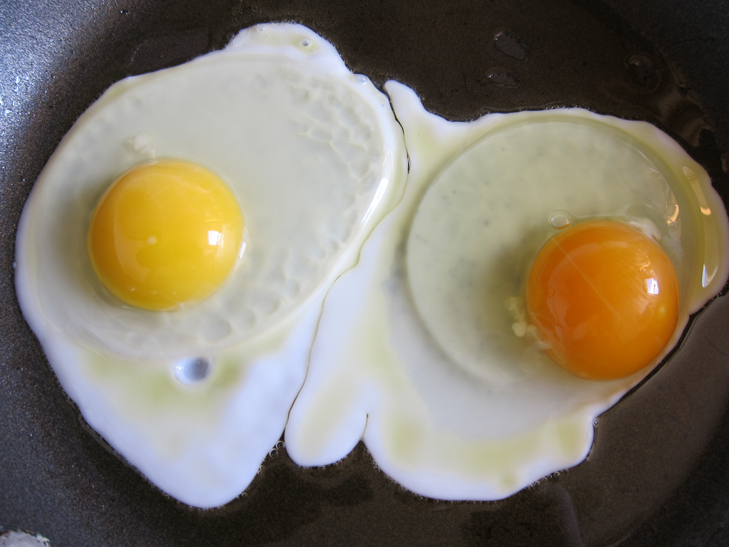 A chicken's diet affects the yolk color of her eggs  Flickr / snickclunk