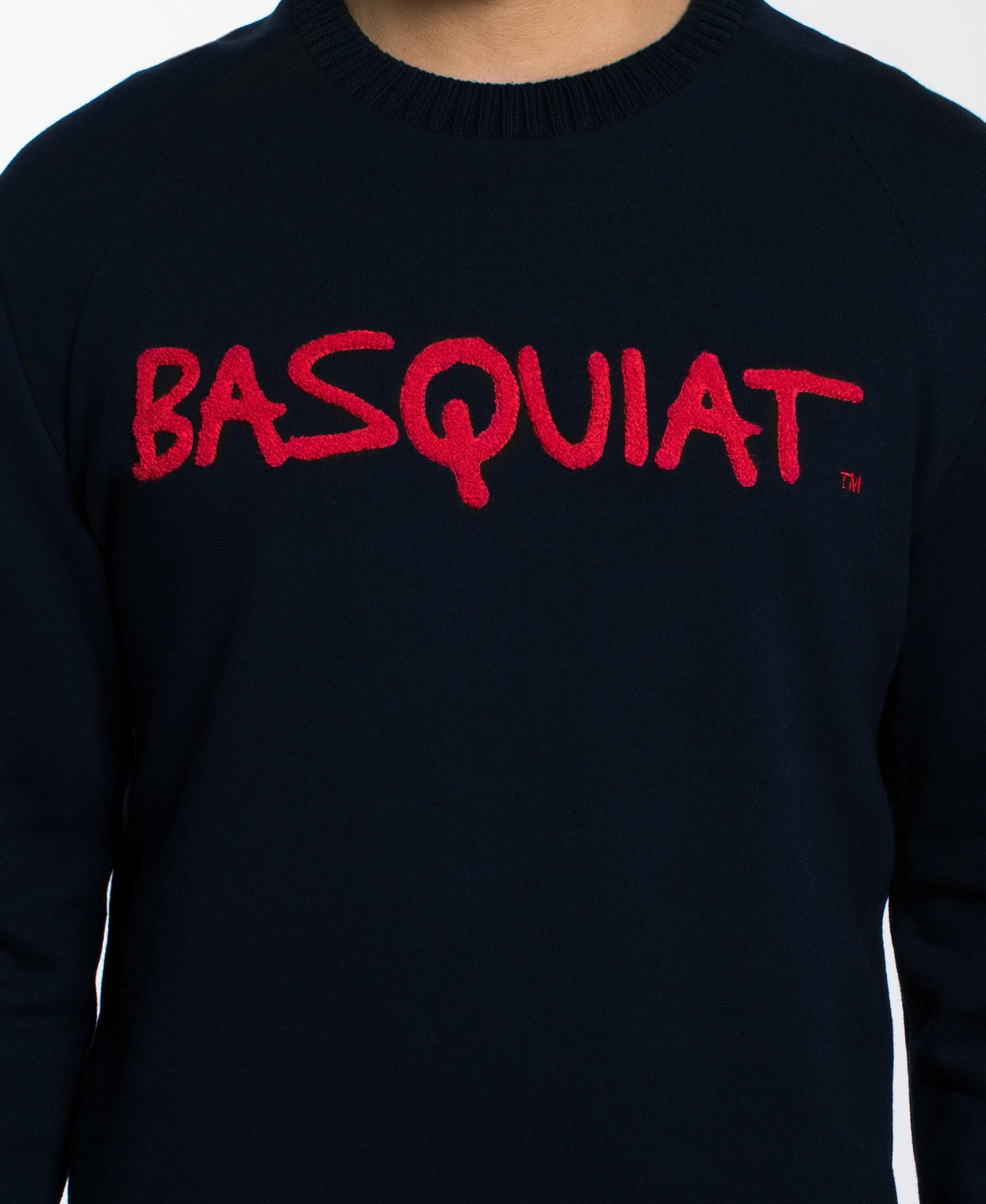 Basquiat Solid Chenille Sweatshirt Upclose.jpg