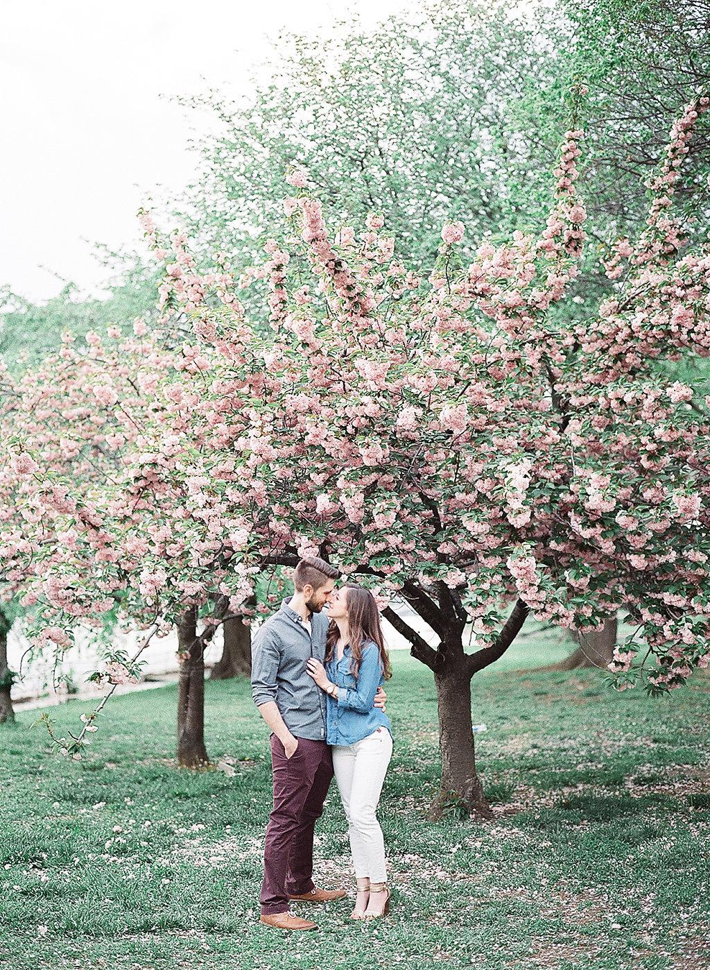Cherry Blossom Engagement Photos | Tidal Basin Engagement Photography | Andrea Rodway Photography