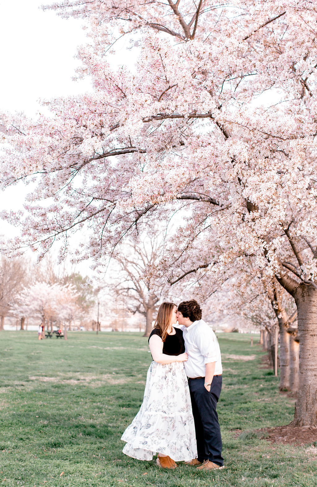 Hains Point Cherry Blossom Engagement Photography | Washington, D.C. | Andrea Rodway Photography