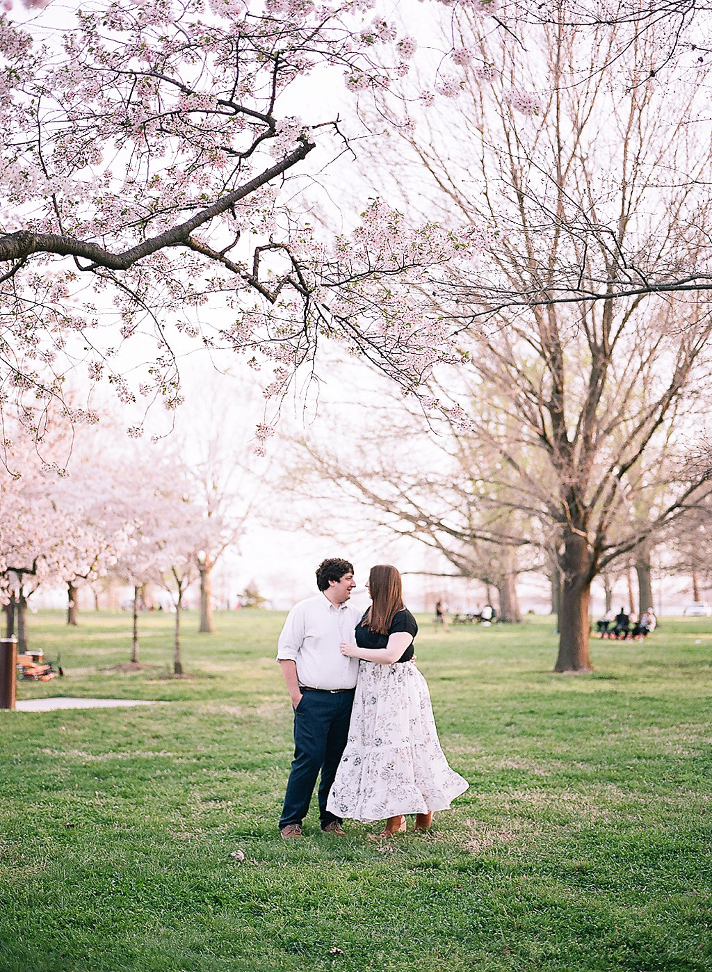 Cherry Blossom Engagement Photos | Andrea Rodway Photography