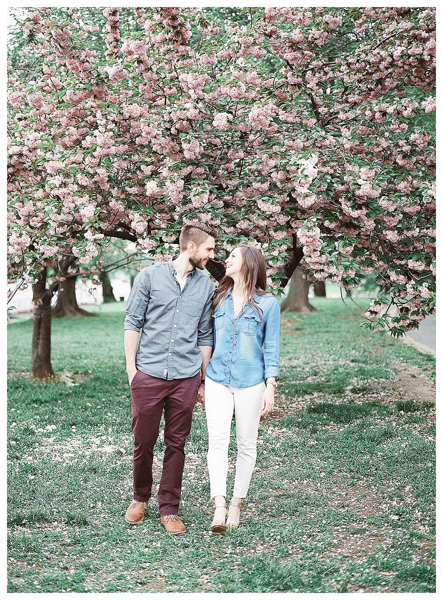 Cherry Blossom Engagement Photos Virginia Wedding Photographer Andrea Rodway Photography