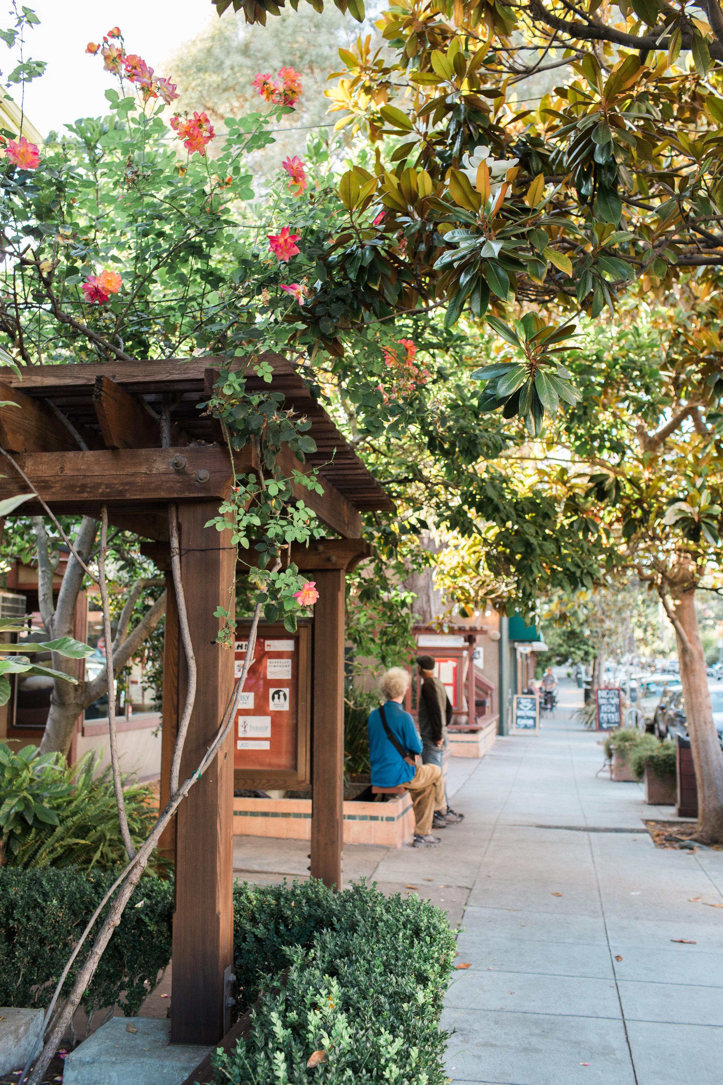 Wanderlust California: Berkeley