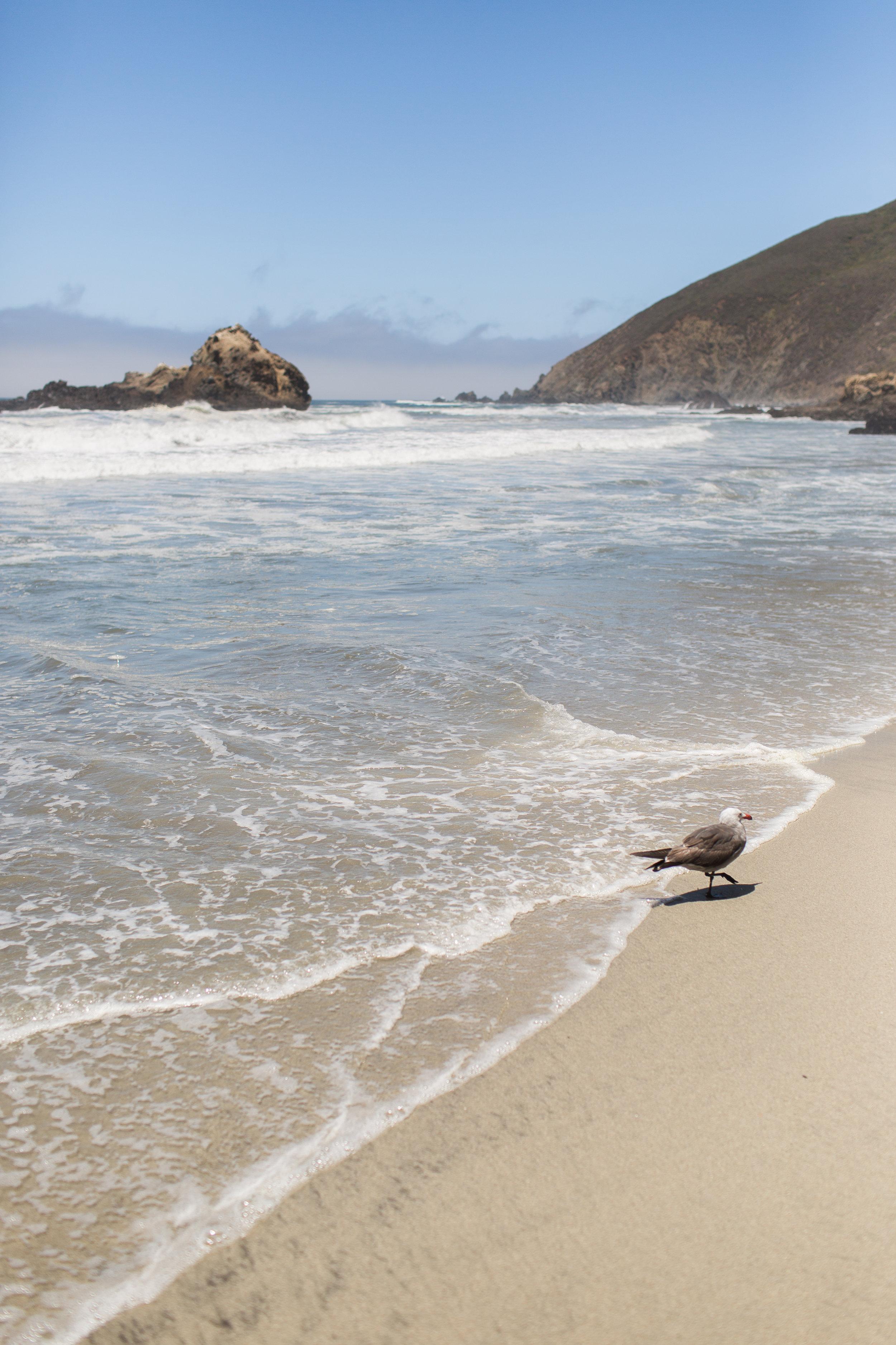 California-107.jpg