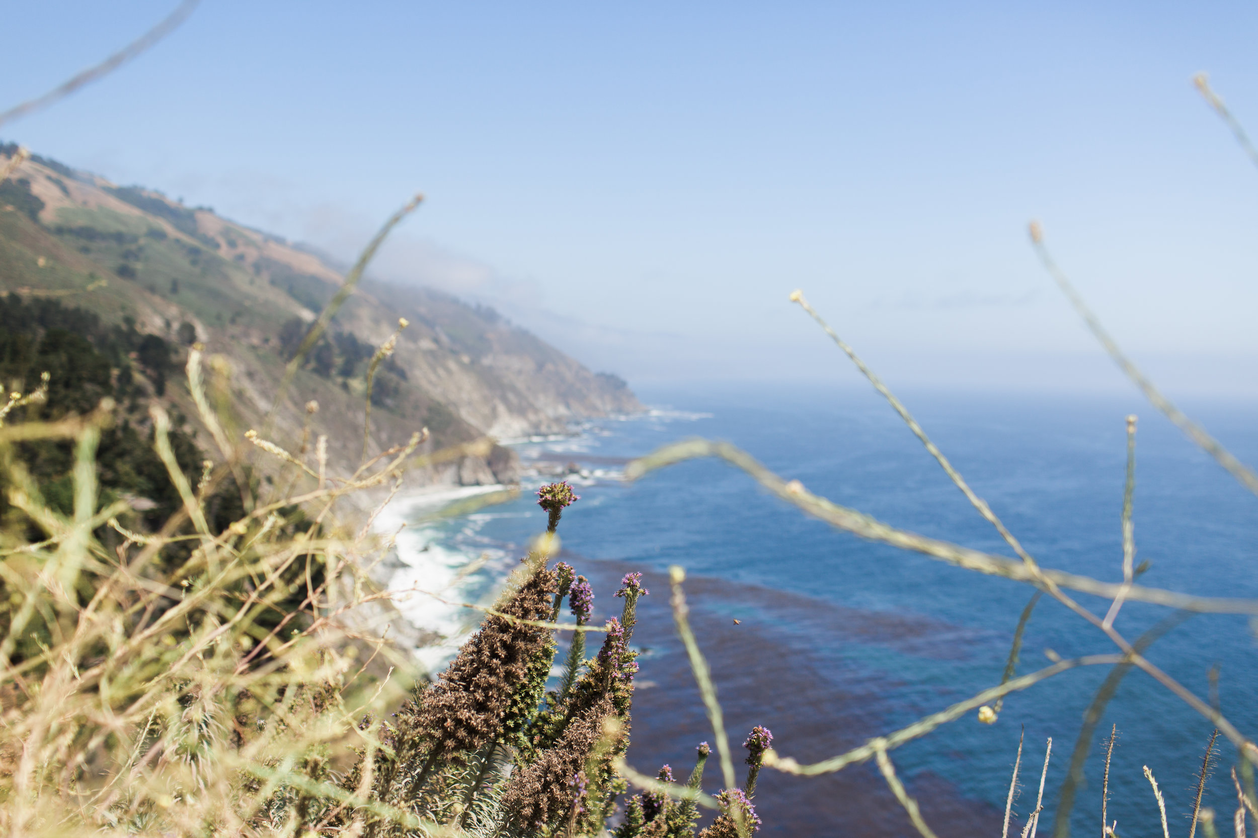 California-113.jpg
