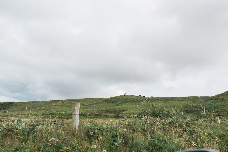 Ireland (80 of 185).jpg