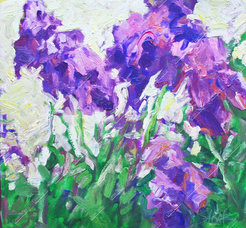 Lavender Irises, 12x12