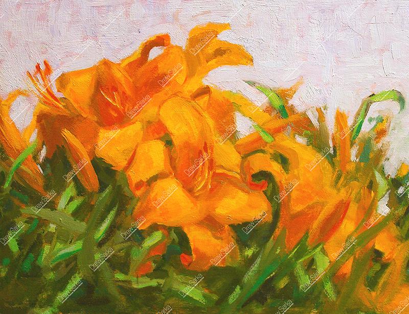 Sunlit Daylillies, 11x14