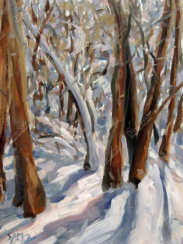 Winters Shadows, 12x16
