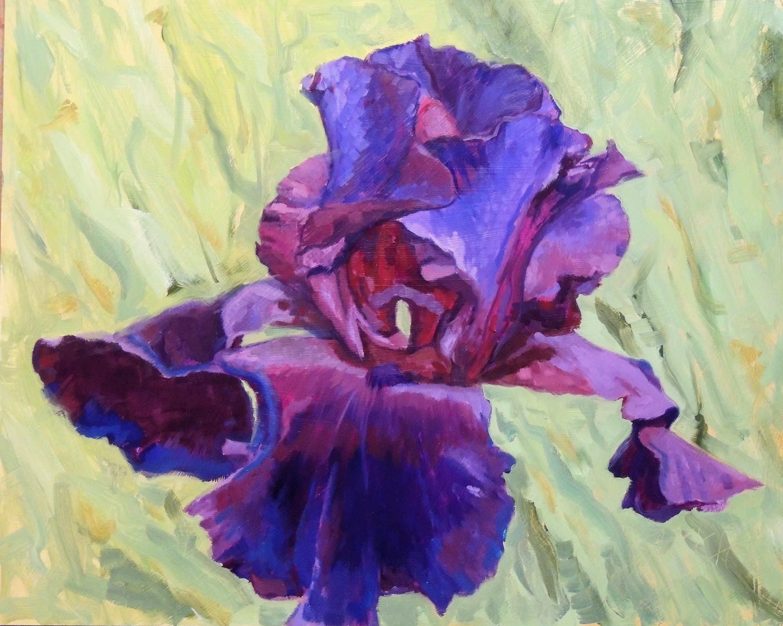 Formal Iris 16x20