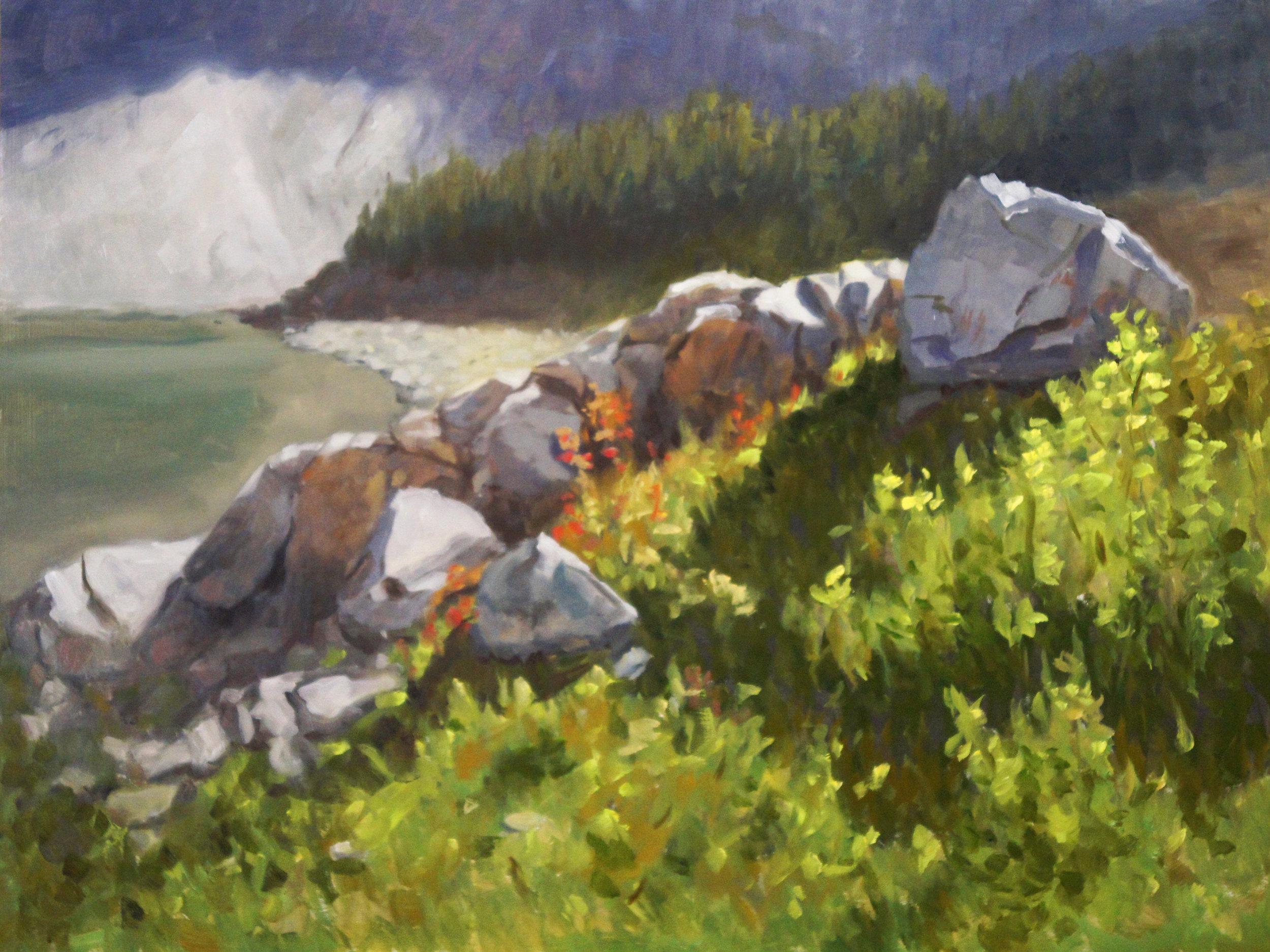 Lake Agnes Wildflowers
