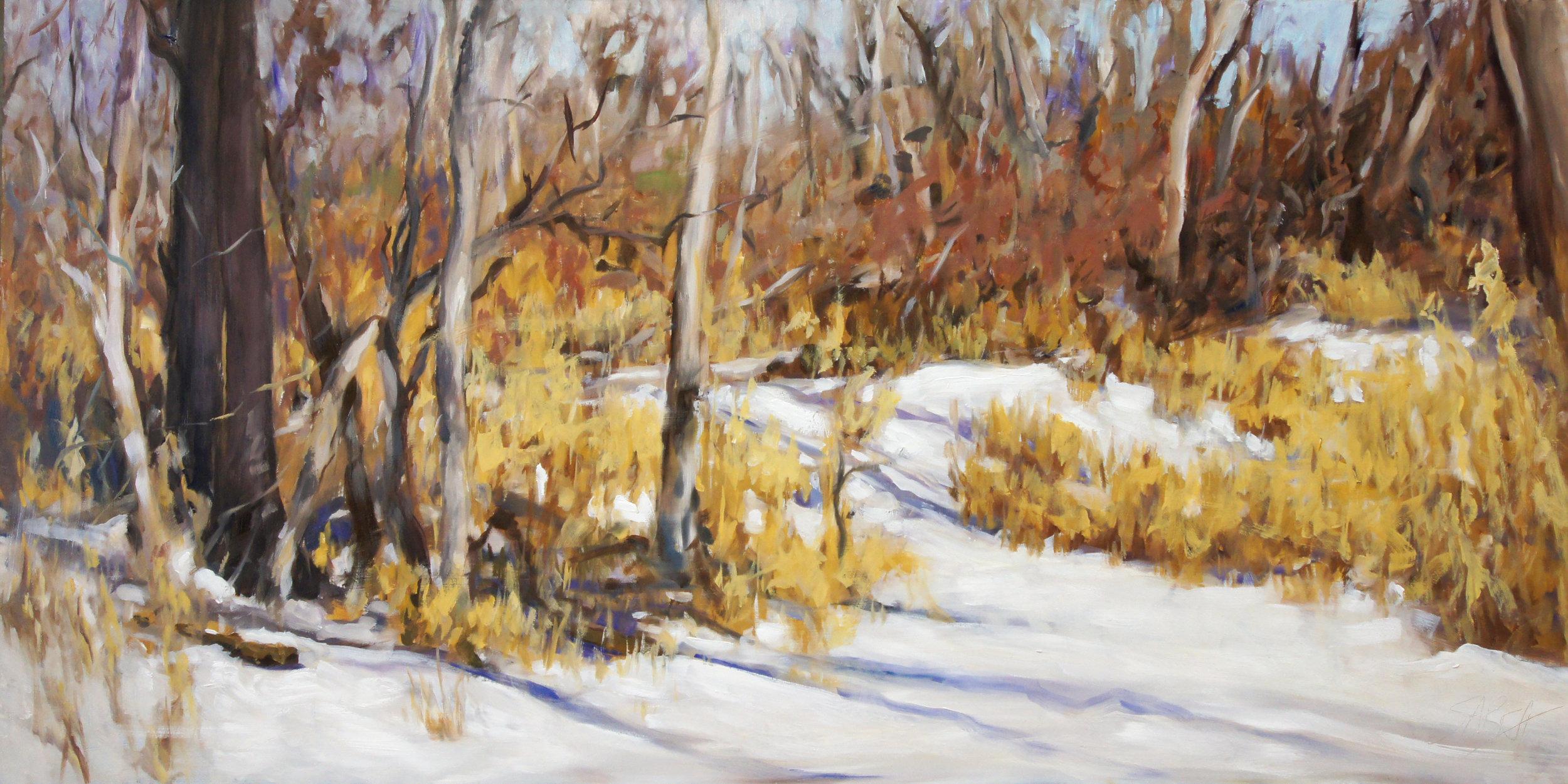 Jewell Snow Field