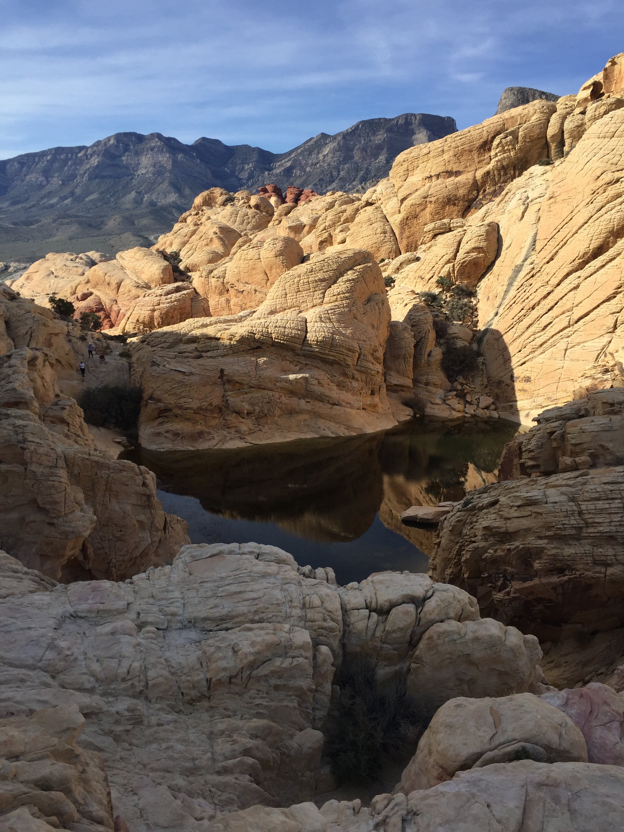 honestlysarcastic,redrock,redrockcanyon,calicotanks,redrockcanyoncalicotanks,hike,explore,adventure,birthday
