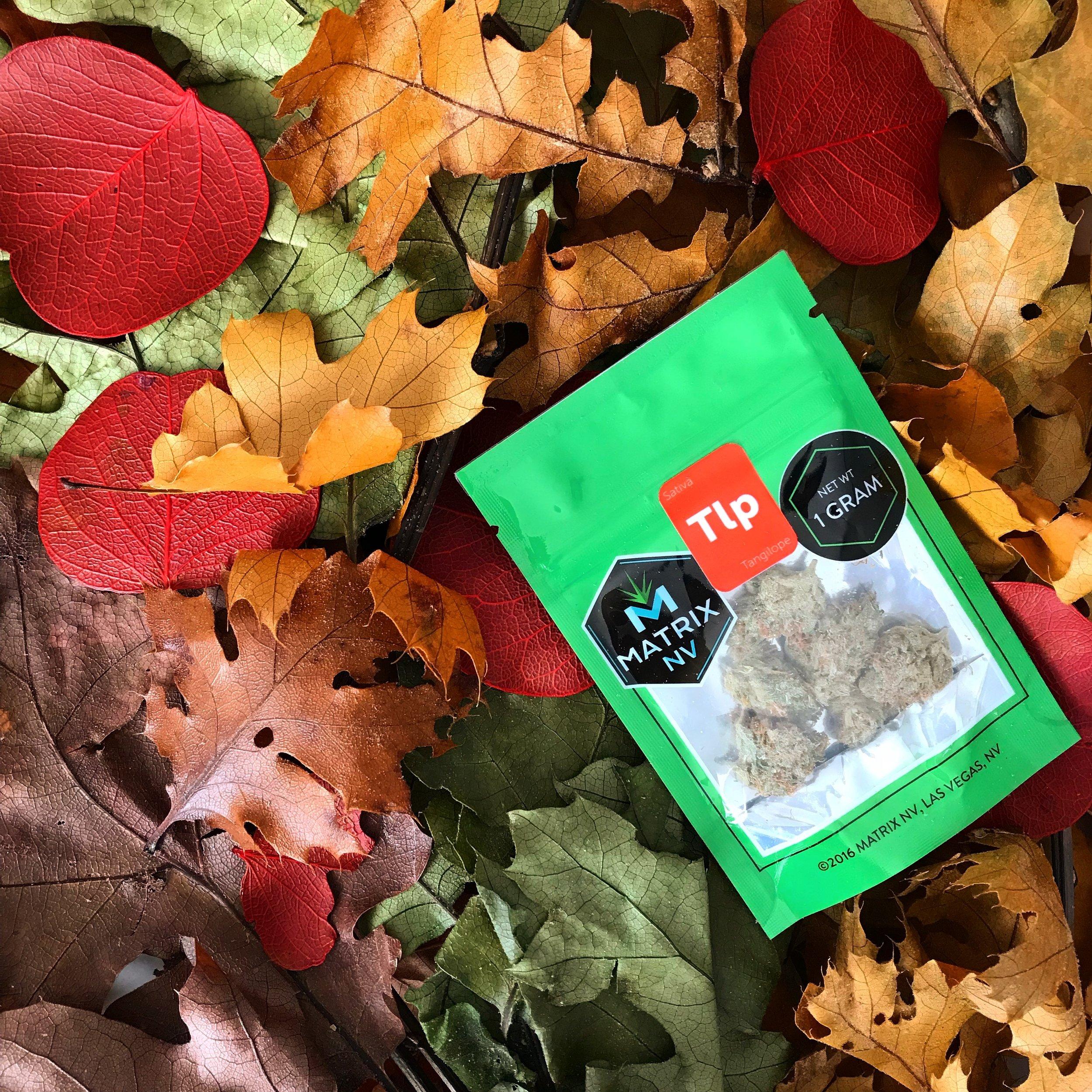Matrix NV -  @matrix_nv  Social Feature - @cannabisinvegas  The+Source -  @thesourcenevada