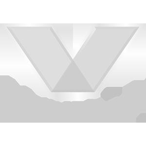 Motion Graphics - Client - Valvoline - Timothy van Niekerk
